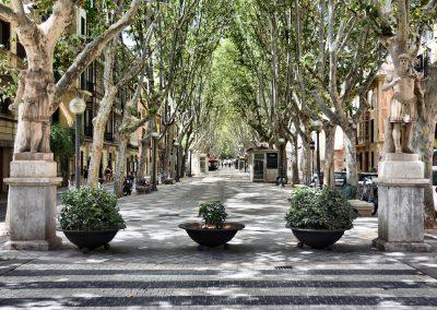 Palma, Mallorca 🔎